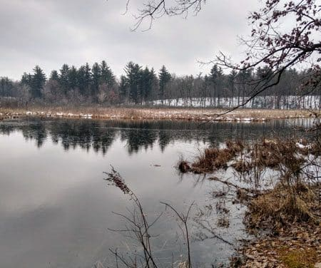 Winter Wanderings: Newaygo County's Trails